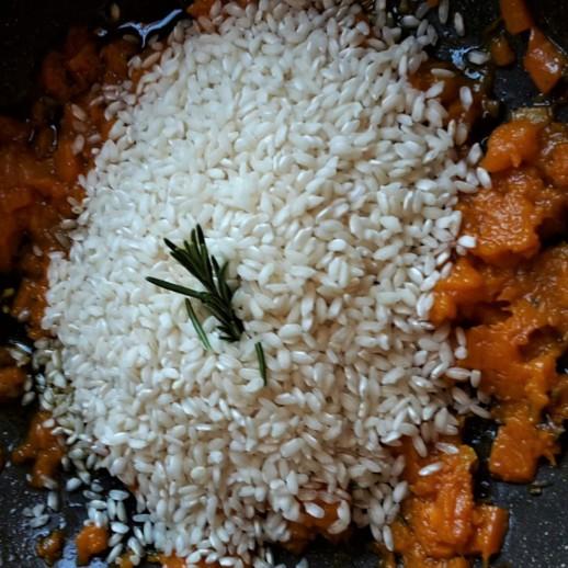 rizo zucca padella
